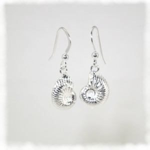 Silver ammonite earrings