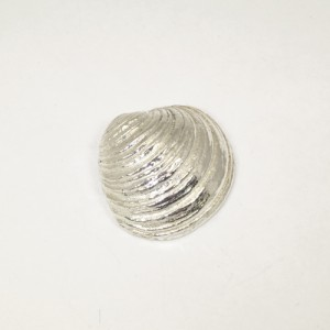 Sterling silver sea shell