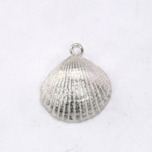 Small silver shell