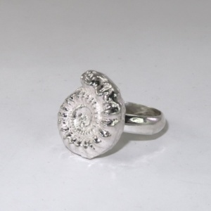 SIlver ring woth a solid half thickness ammonite