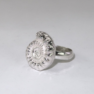SIlver ring with a solid half thickness ammonite