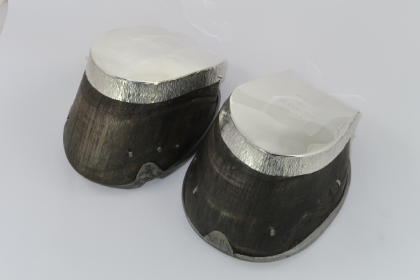 Silver horse hoof covers